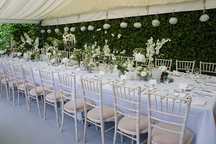 Lime wash chairs